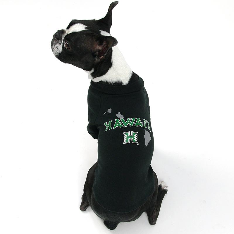 画像1: 【Tシャツ】ハワイ大学公式認定 Fauna アイル・スタイル