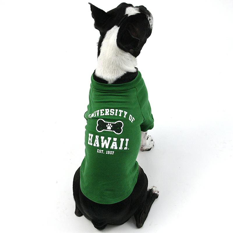 画像1: 【Tシャツ】ハワイ大学公式認定 Fauna コリジェット