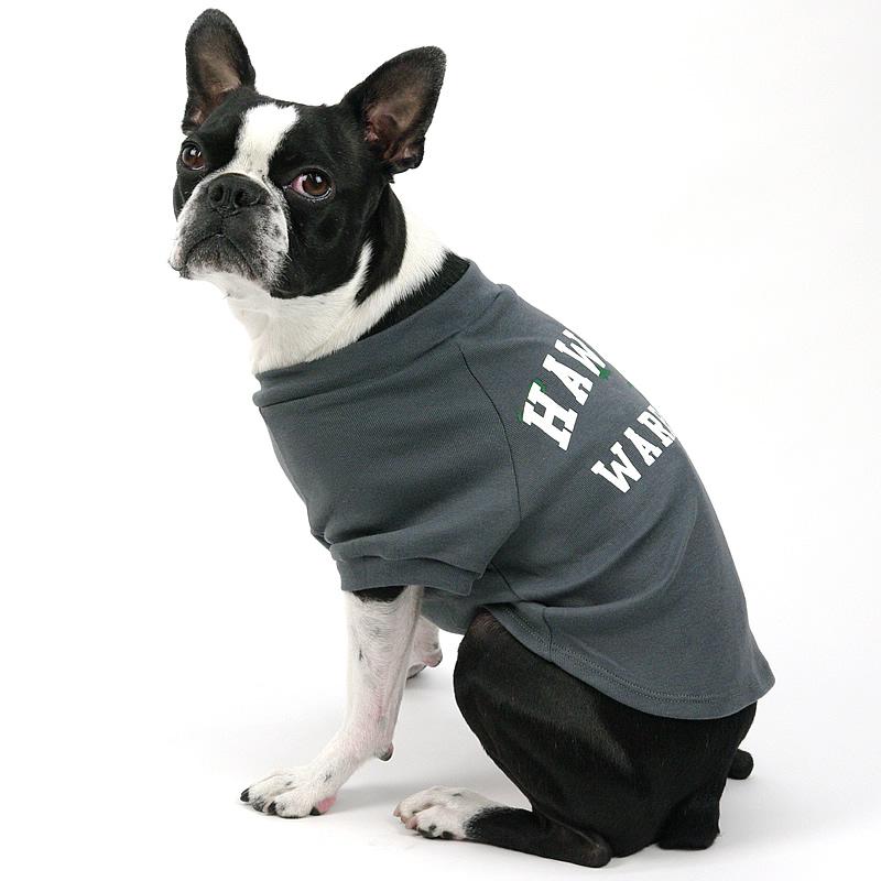 画像1: 【Tシャツ】ハワイ大学公式認定 Inuko ウォーリアーズ