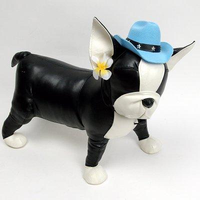 画像1: 【帽子】カウボーイ&カウガール・ハット(水色)