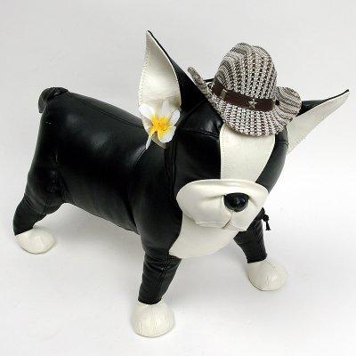 画像1: 【帽子】カウボーイ&カウガール・ハット(茶ベージュ)