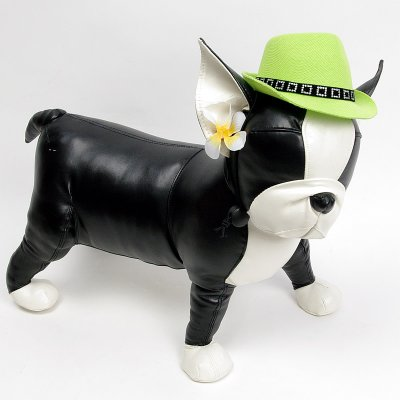 画像1: 【帽子】カウボーイ&カウガール・ハット(グリーン)
