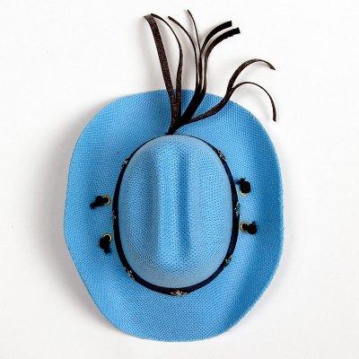 画像2: 【帽子】カウボーイ&カウガール・ハット(水色)