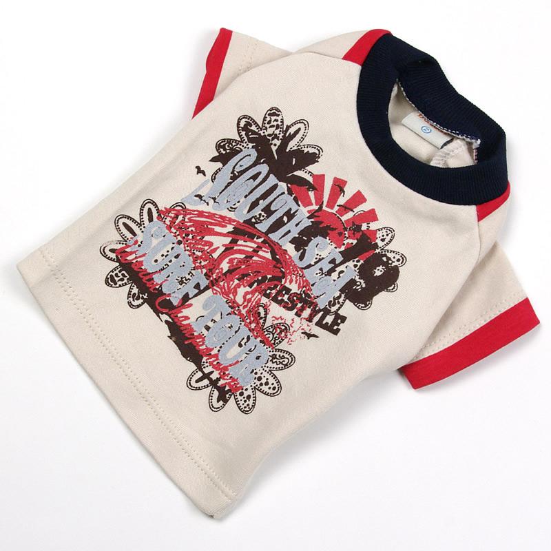 画像1: 【Tシャツ】サーフ・ラグランTシャツ(グレー)