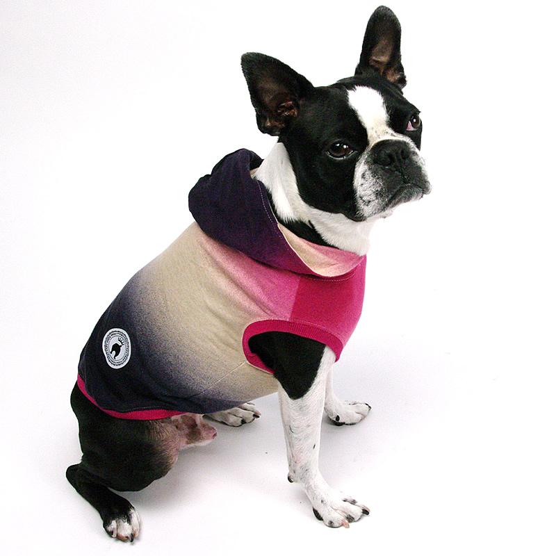 画像1: 【パーカー】グラデーション・Tシャツ・パーカー(ピンク系) (1)