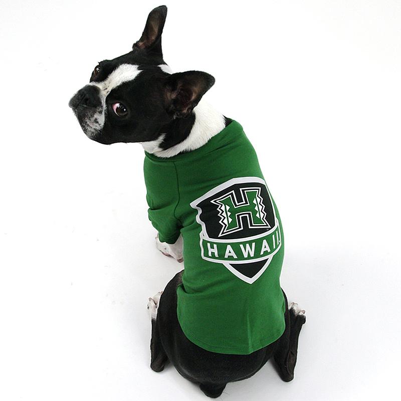 画像1: 【Tシャツ】ハワイ大学公式認定 Fauna ヒーロー