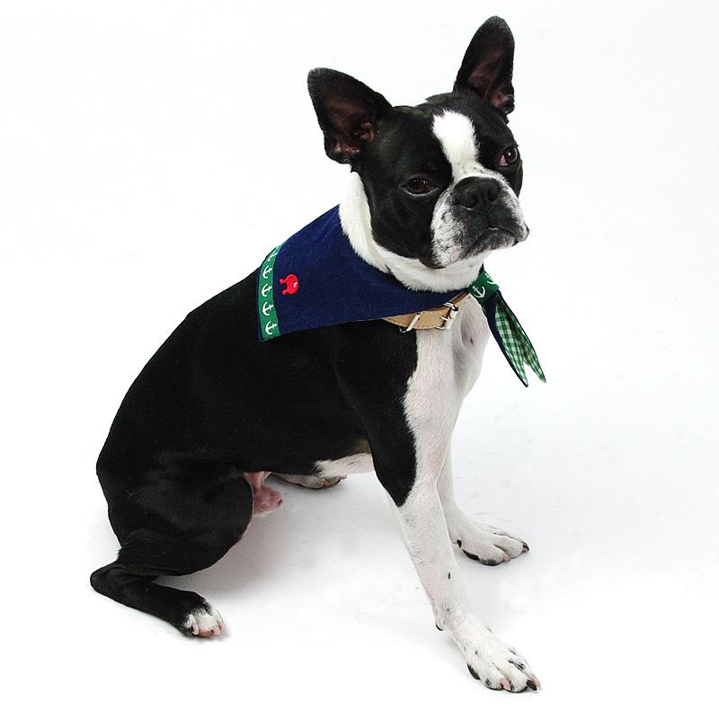 画像1: 【バンダナ】Dogs Tail セーラーカラー(グリーンライン)