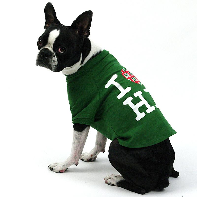 画像1: 【Tシャツ】ハワイ大学公式認定 Fauna アイラブハワイ